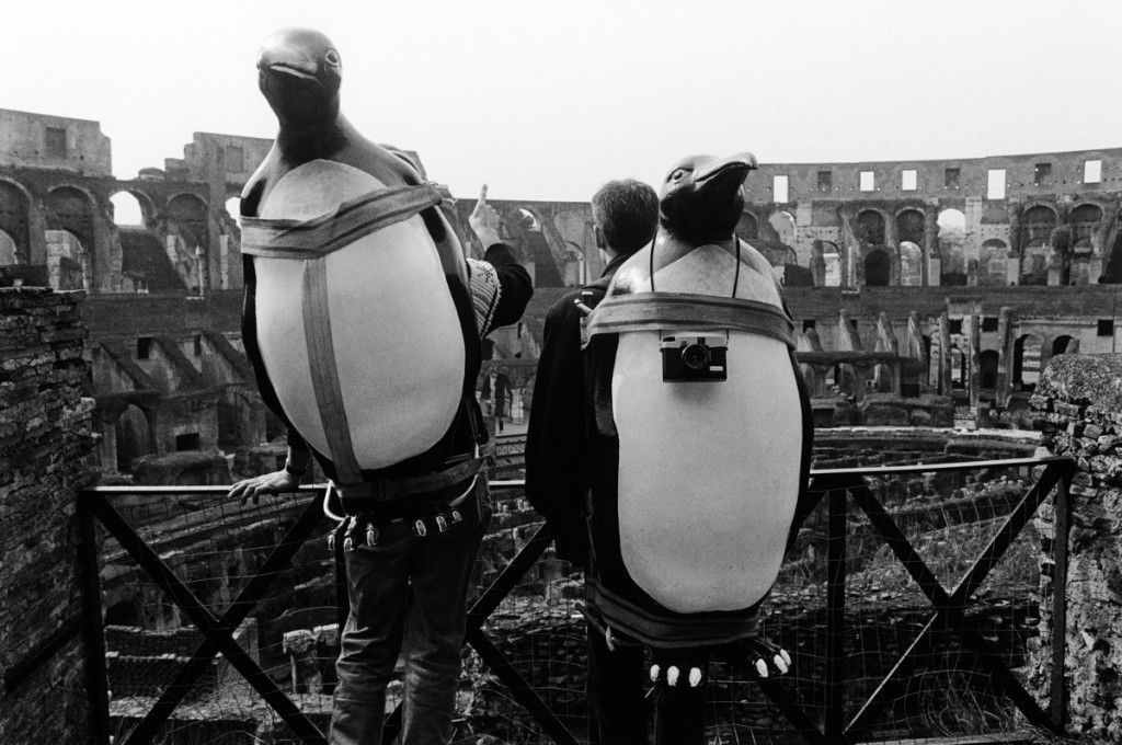 Penguins in the Colosseum, Rome, Italy - 1991